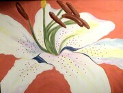 "Lilly 36""x72"" acrylic on canvas"